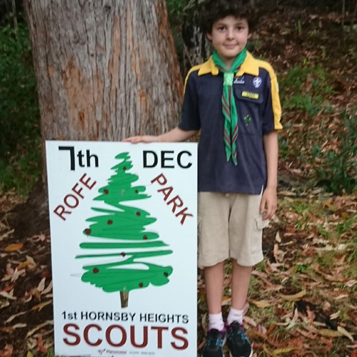 HH Scouts Xmas trees sale