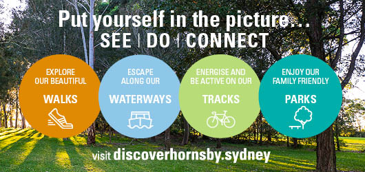 DiscoverHornsby2017