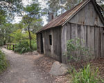 Australian Garden