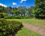 South American Garden