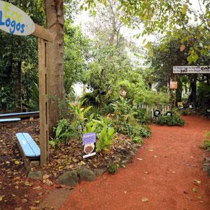 Kimbriki eco garden