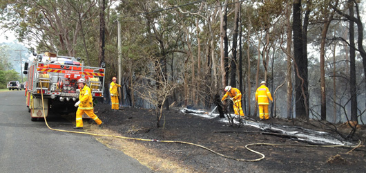 Bushfire management