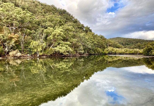 <strong>© Helen Curry – Reflecting on Cockle Creek</strong>