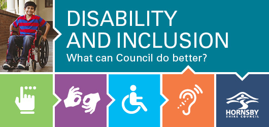 Disability Inclusion Action