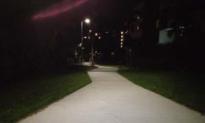 Orara Park Path