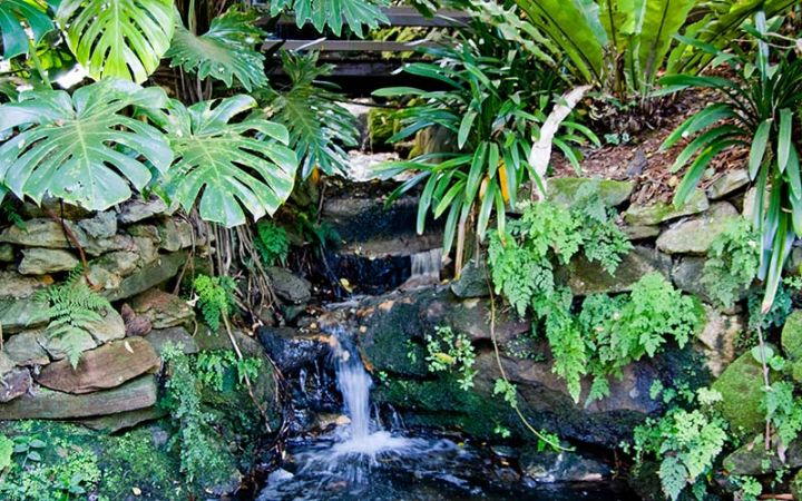 Lisgar Gardens cascades