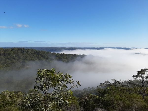<strong>© Julie Green – Mist in the Valley</strong><br>The photo was taken on one of the many bushwalks (for exercise) our family enjoyed during the first COVID lockdown. A positive from COVID was there was time to enjoy the beauty of our bushland. The fog made for a mysterious feeling of what lay beneath in the valleys and ridges.