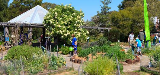 Fagan Park Eco Garden