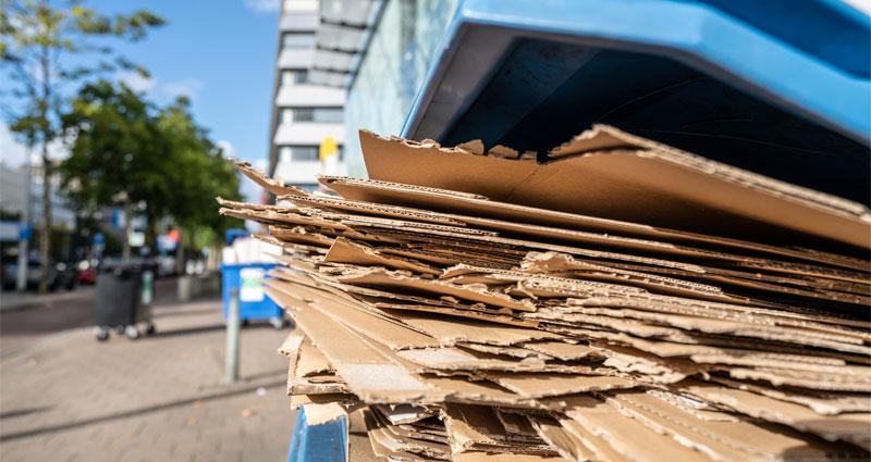 cardboard waste in commercial blue bin