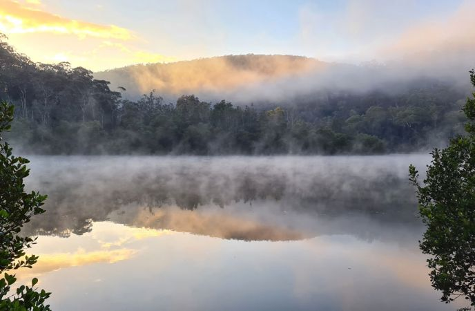 <strong>Equal First © Petra Holland – Berowra Creek - Crosslands</strong><br>Misty winter mornings are magical down at Crosslands and every morning you go down there the atmosphere is different. This morning had the perfect light and mist for a good photo.