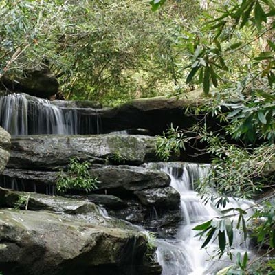 Three Streams Bushwalk - Barry Ormond