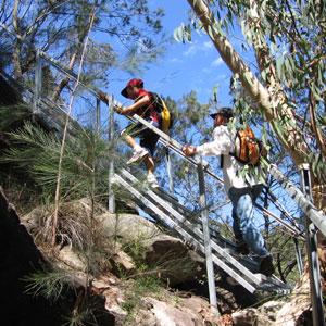Ti-tree walk up stairs