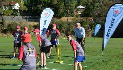 Berowra cricket pitch