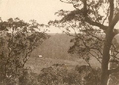 First settlement