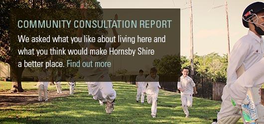 community consultation report