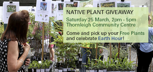 Native Plant Giveaway