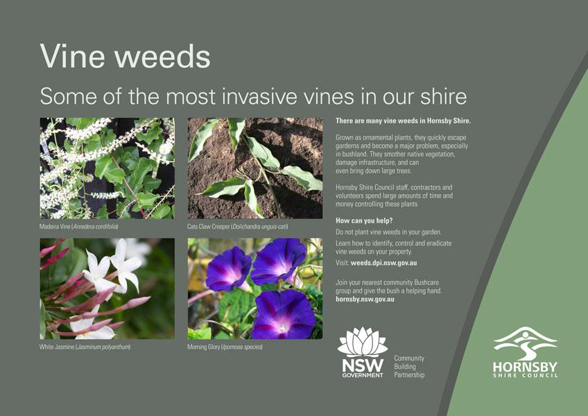 Vine weed variations