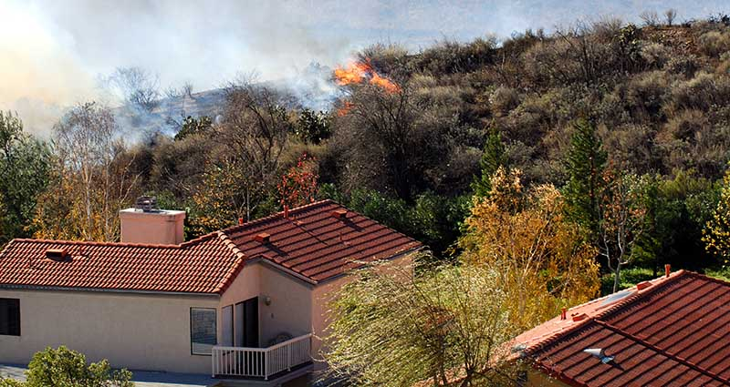 bushfire preparedness