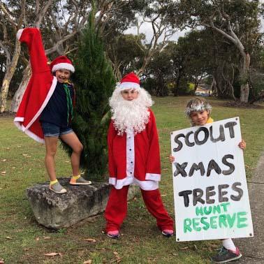 Scout Xmas Tree Sale
